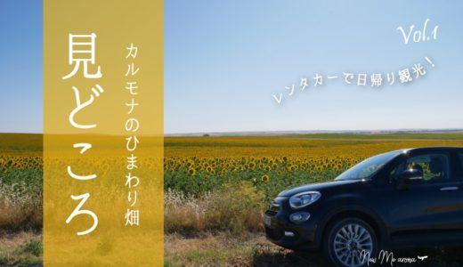 【旅情報】カルモナひまわり畑の見どころポイントまとめ☆レンタカーでひまわり畑&白い街巡り<前編>